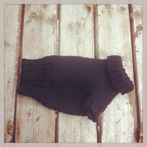 A black dog sweater.